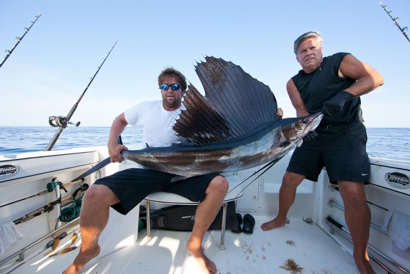Sailfish Released
