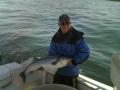 Striper Fishing Virginia Beach